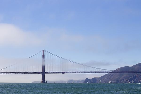 Blue Angels, Fleet Week, San Francisco, Fashion Blogger, Bay Area Blogger, San Francisco Bay, Weekend Highlight, Have Need Want