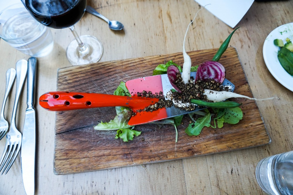 Healdsburg Shed-The Shed-Visit Healdsburg-Wine Country-Have Need Want Travels-Chef Choice Dinner-Food Photography 5