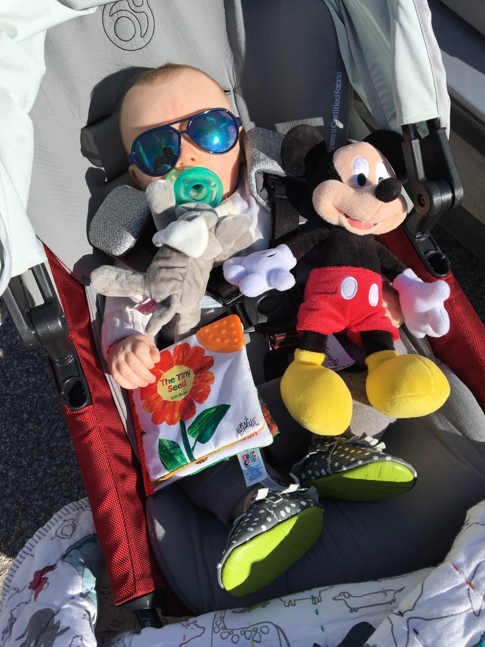 Mason's 6 Month Update-6 Month Baby Update-Life with a 6 Month Old-Mom Life-Motherhood-Have Need Want 11