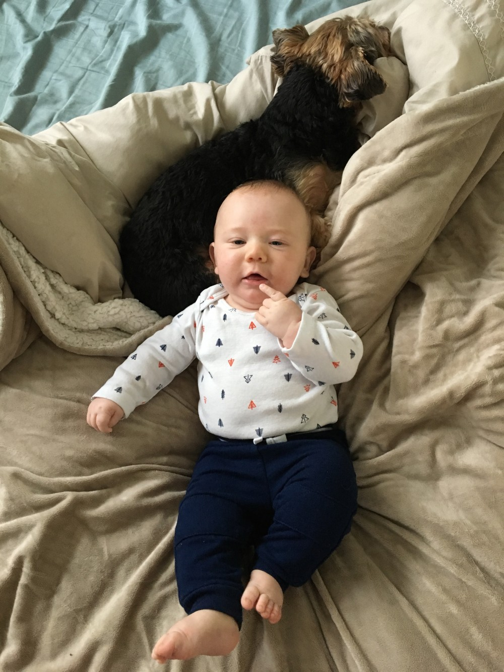 Mason's 6 Month Update-6 Month Baby Update-Life with a 6 Month Old-Mom Life-Motherhood-Have Need Want 9