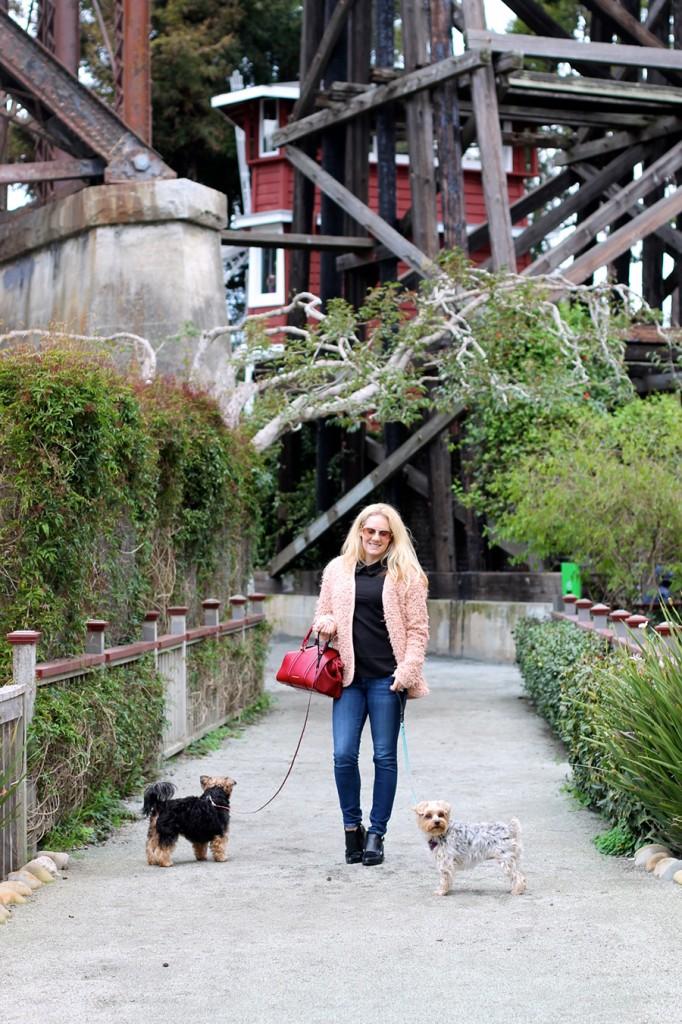 Ted Baker-embellished shoulder blouse-Weekend Style-English Factory Jacket-Sam Edelman Shoes-Burberry Handbag-Spring Transition-Fashion Blogger-Bay Area Fashion Blogger-Have Need Want Blog 7